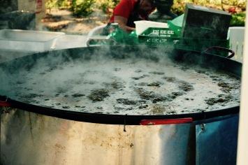 Paella Valenciana - frisch zubereitet.
