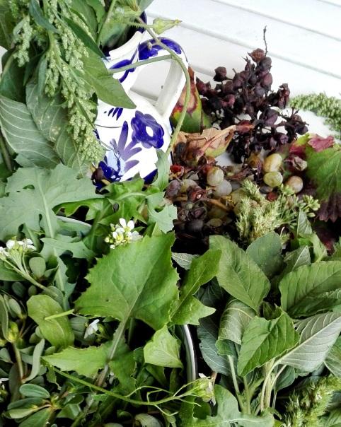 Wildpflanzensalat mit den weissen Wasabi-Raukeblüten Foto: Uta Gritschke